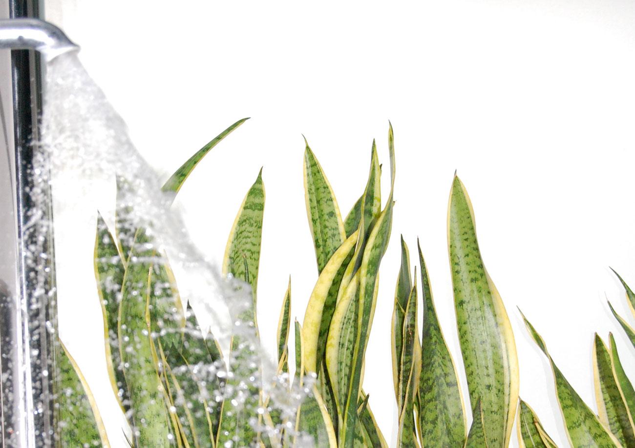 bagno turco verona - 28 images - sauna e bagno turco a verona rovigo ...